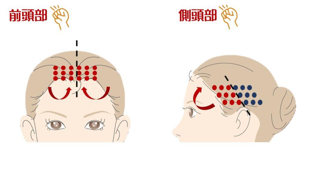 前頭部・側頭部 頭皮マッサージ