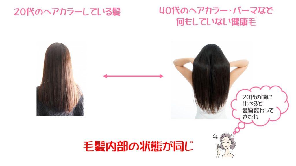毛髪内部の状態